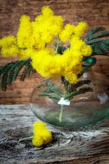 vasetto in vetro con mimosa