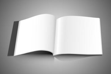 identity horizontal white magazine