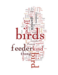 Do you feed the birds in your garden