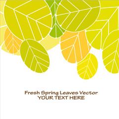 Fresche foglie di primavera immagine vettoriale