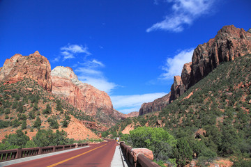 Zion National Park 7