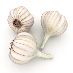 Head of garlic on white background