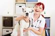 Glückliche Tierärztin mit Hund in Praxis