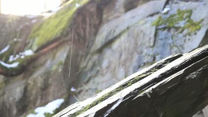 Wassertropfen auf einer Steinplatte in der Natur