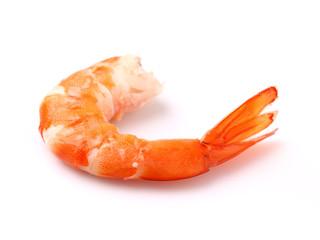 Shrimp in closeup