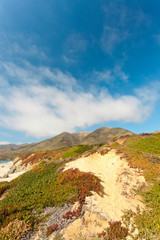 Coast of Big Sur with rocks and vegetation. California. USA.