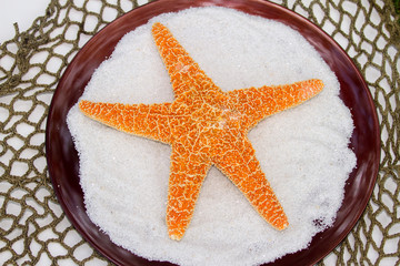 Starfish on white sand