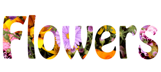 Word flowers making with bright flowers