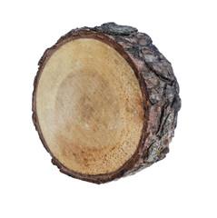 Кольцо дерева