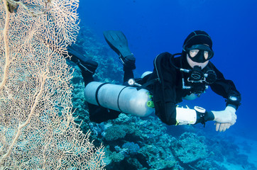 scuba diver with big fan coral in the ocean