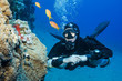 side mount scuba diver looks at fish in the ocean