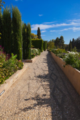Park in Alhambra palace at Granada Spain