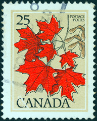 Sugar maple leaves (Canada 1977)