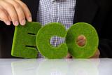eco alphabet, green concept