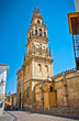 Bell tower of Mezquita (Mosque) and Cathedral , Cordoba,  Spain.