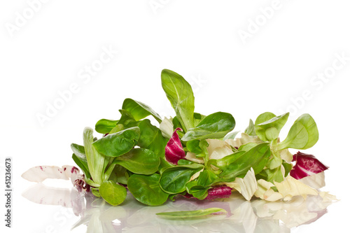 fresh salad with arugula