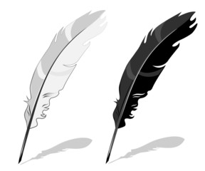 Feather pen, black and white composition with shadow