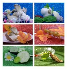 collage wiht garlic, shitake, cucumber and basil