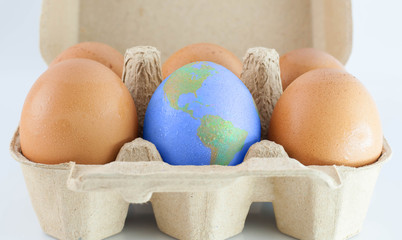 eggs with world earth texture