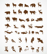 Vector Collection Of Animal Ic...