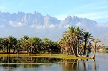 Yemen. Socotra island