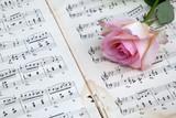 rosa Rose auf antiken Musiknoten