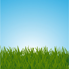 Background with a blue sky and green grass