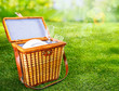 Picnic basket on a sunny green lawn
