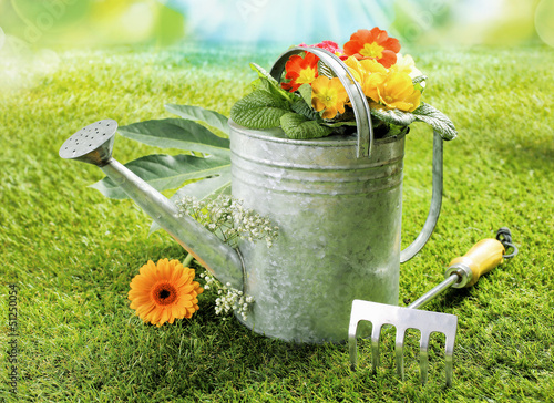 Watering can with summer flowers