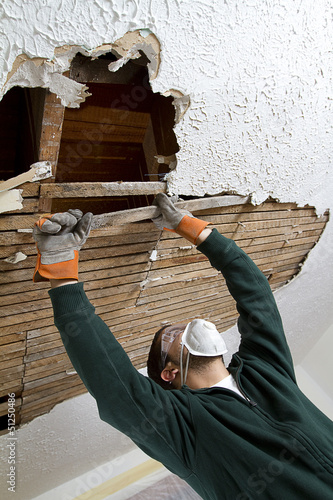 a young male pulls down plaster ceiling lathe with his hands