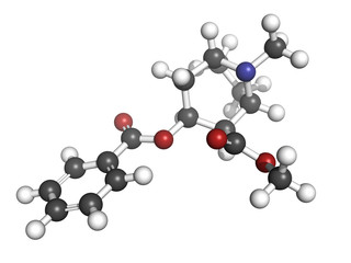 Cocaine drug, molecular model.