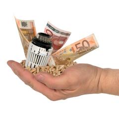 Hand mit Thermostat und Geld