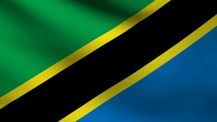 Tanzania flag.
