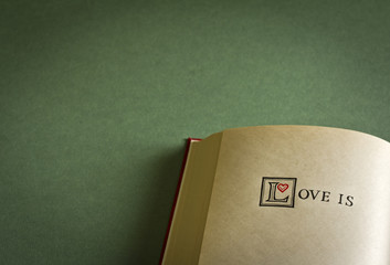 Vintage style Love is words in the open book. Copy space