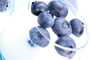 Blueberry and yogurt macro