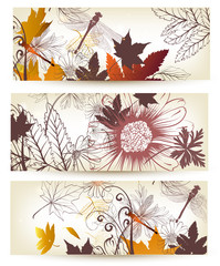 Floral backgrounds set