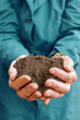 Soil in hands of agricultural worker