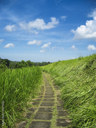 country path ubud bali indonesia