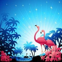 Pink Flamingos on Blue Tropics-Fenicotteri Rosa