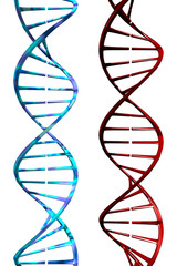 DNA (3D)