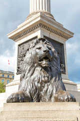 A lion on Trafalgar square.