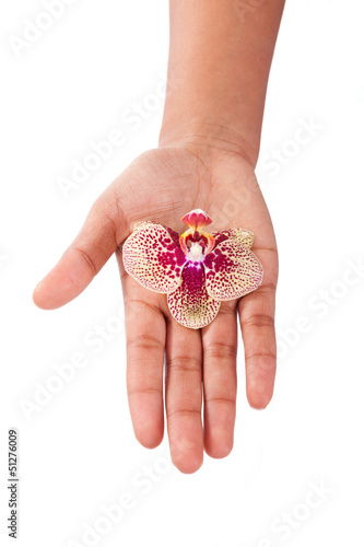 Black African American woman hand holding an orchid flower