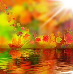 Bunte Herbstblätter, Herbsthintergrund