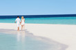 Rear View Of Romantic Couple Walking On Tropical Beach