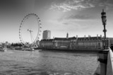 View the London Aquarium and the London Eye from Westminster Bri