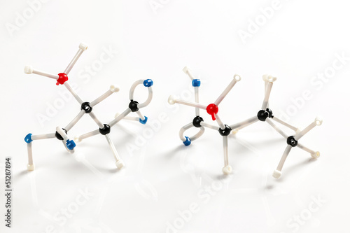 Molecular models of two amino acids