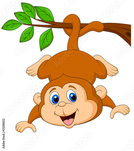 Cute monkey hanging on a tree branch