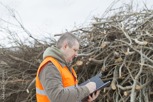 Employee near branches before preparing in wood chips