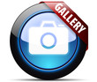 My Gallery button