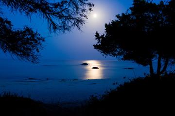 Paesaggio Notturno Marino con la Luna piena